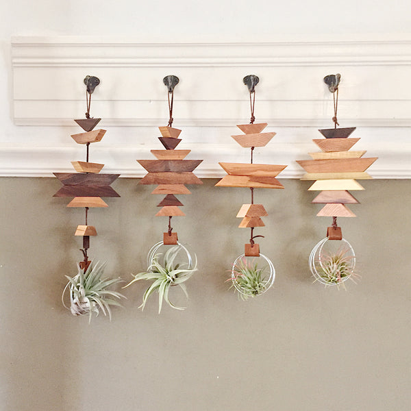 Modern Southwest Air Plant Wall Hanging no.29