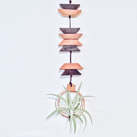 Modern Southwest Air Plant Wall Hanging no.11