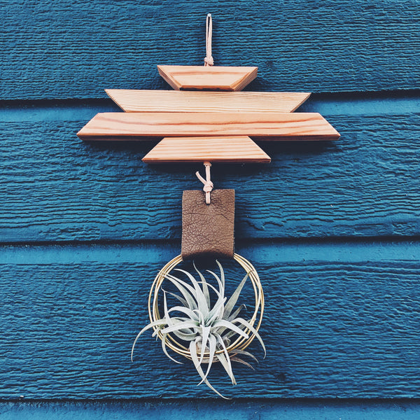 Modern Southwest Air Plant Wall Hanging no.4