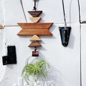 Modern Southwest Air Plant Wall Hanging no.56