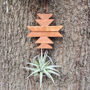 Modern Southwest Air Plant Wall Hanging no.23