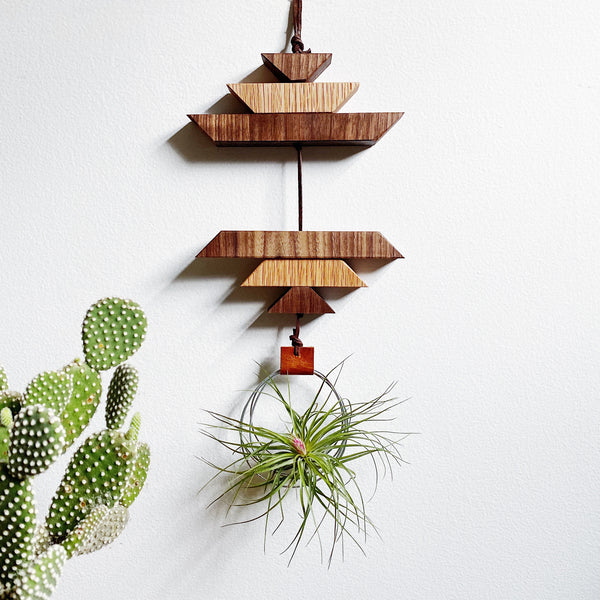 Modern Southwest Air Plant Wall Hanging no.46