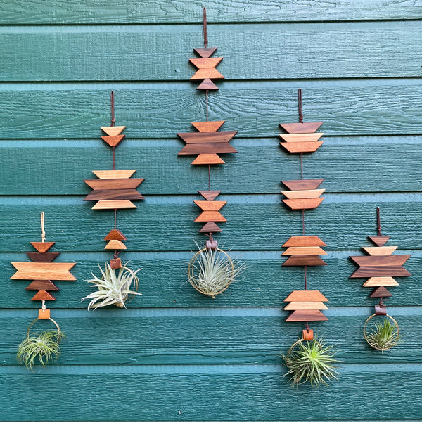 Modern Southwest Air Plant Wall Hanging no.55