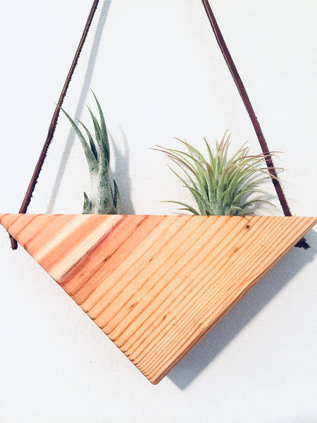 Triangle Air Plant Hanger - Double