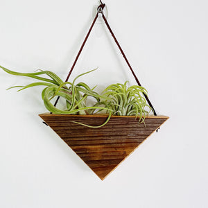 Triangle Air Plant Hanger - Double *Gray Patina*