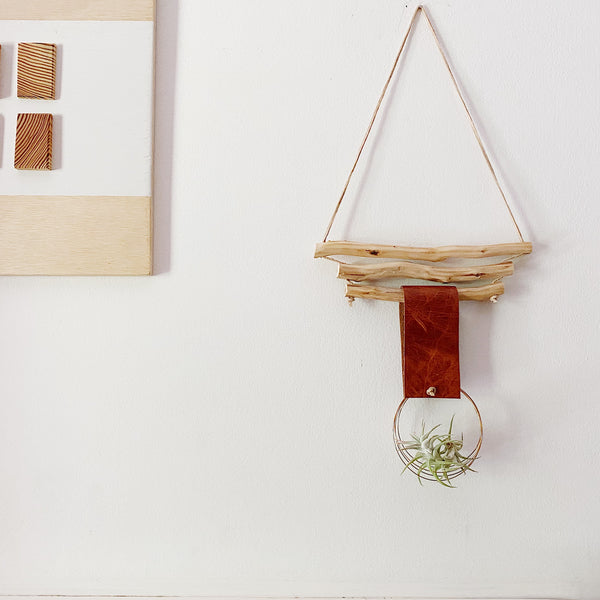 Floating Ring Air Plant Wall Hanging -Triple Branch