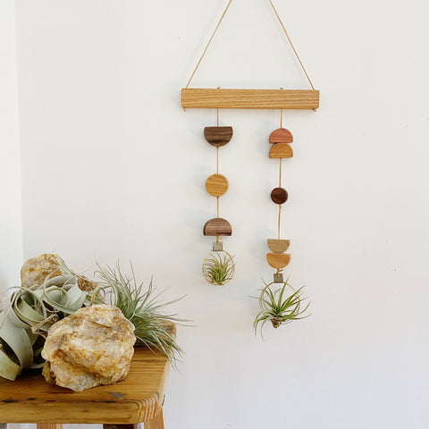 Air Plant Wall Hanging - Asymmetric Double Modern Shapes no.004