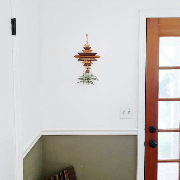 Wildly Modern Southwest Air Plant Wall Hanging no.65