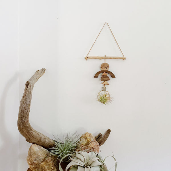 Drifting Arches - Air Plant Wall Hanging no. 006