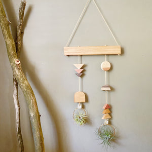 Air Plant Wall Hanging - Asymmetric Double Modern Shapes no.006