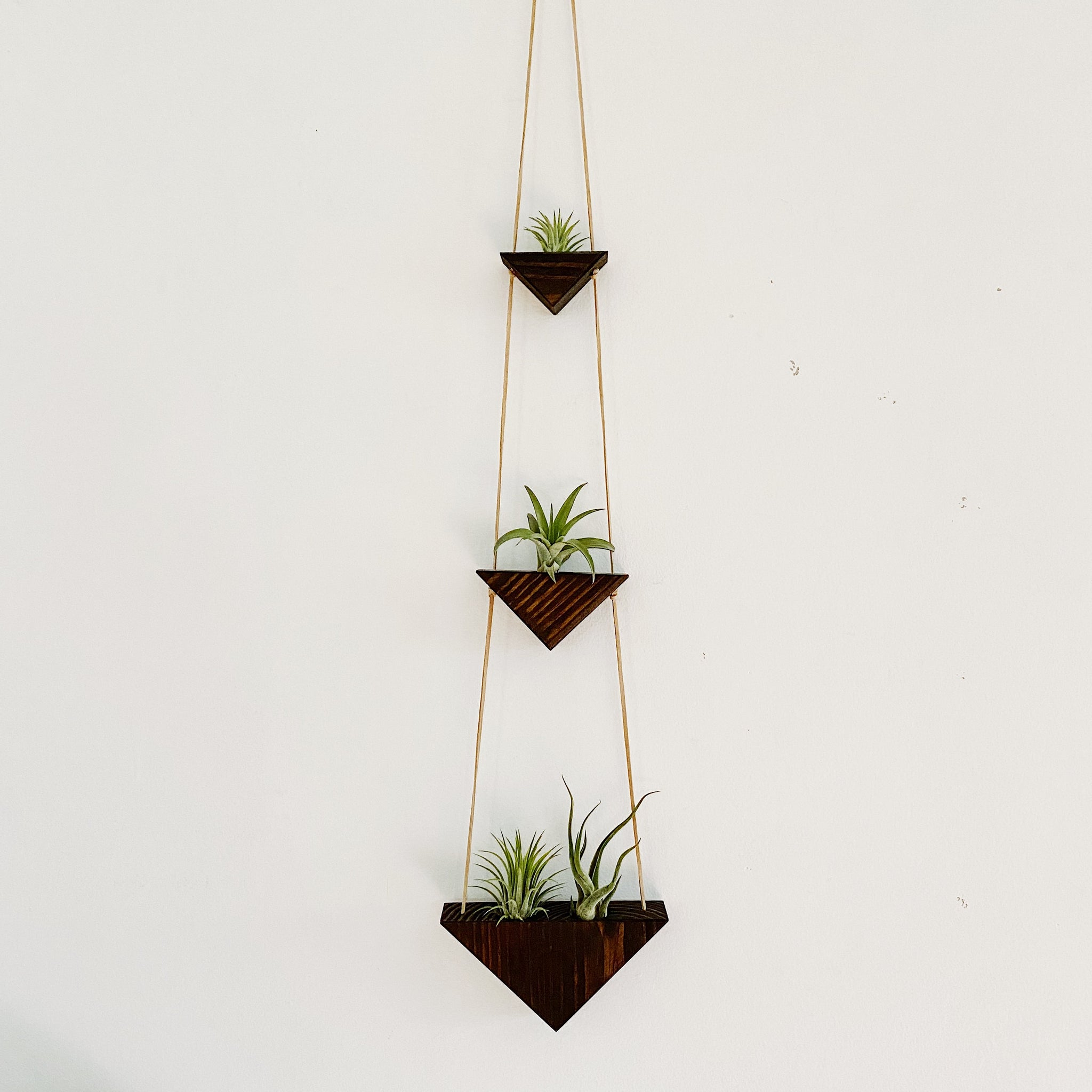 Triangle Air Plant Hanger x3 - Dark