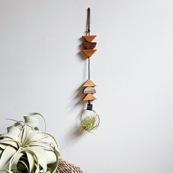 Modern Southwest Air Plant Wall Hanging no.69