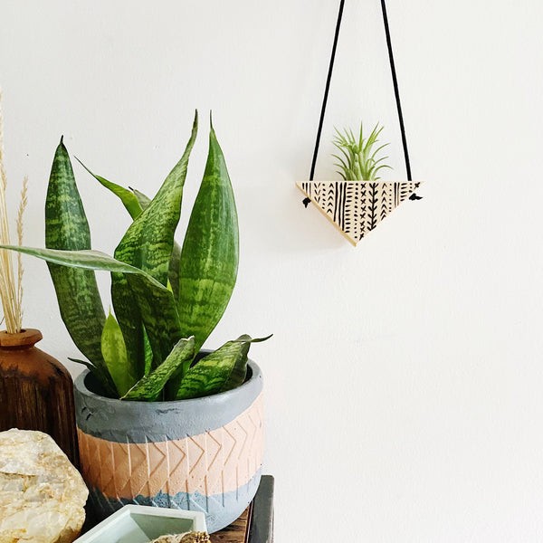 Triangle Air Plant Hanger - Single