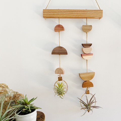 Air Plant Wall Hanging - Asymmetric Double Modern Shapes no.005