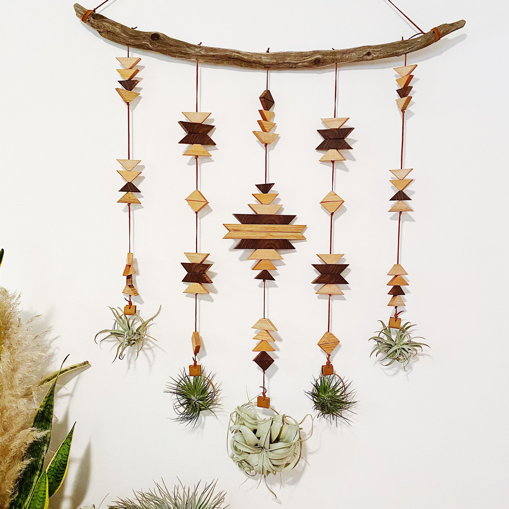 Wildly Modern Southwest Air Plant Wall Hanging - Across the Dunes no. 005