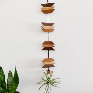 Modern Southwest Air Plant Wall Hanging no.59
