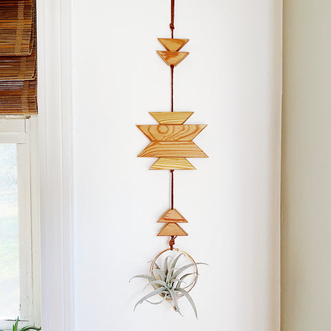 Modern Southwest Air Plant Wall Hanging - no.066