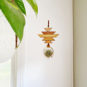 Modern Southwest Air Plant Wall Hanging - no.069