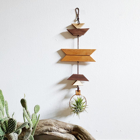 Modern Southwest Air Plant Wall Hanging - no.065