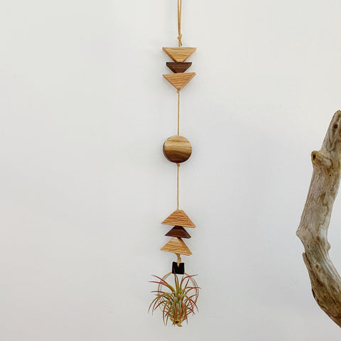 Modern Southwest Air Plant Wall Hanging no.71