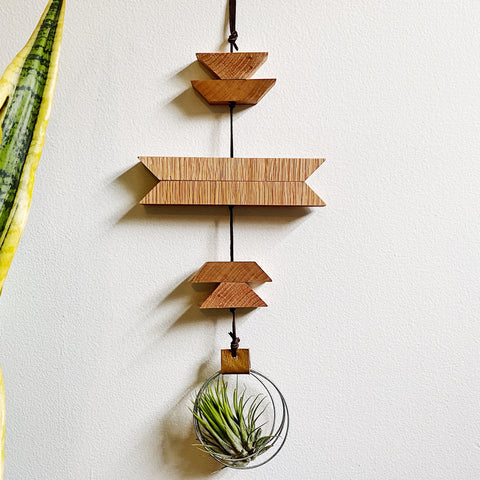 Modern Southwest Air Plant Wall Hanging no.39