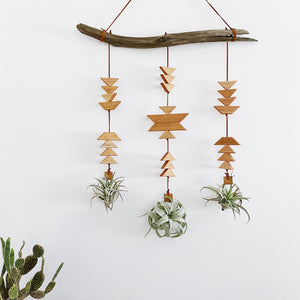 Wildly Modern Southwest Air Plant Wall Hanging - Across the Dunes no. 003