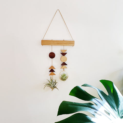 Air Plant Wall Hanging - Double Modern Shapes no.003