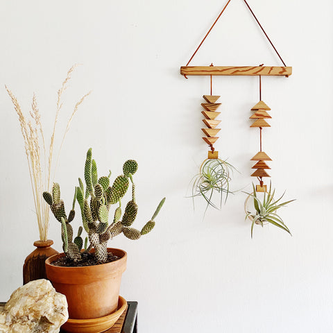 Modern Southwest Air Plant Wall Hanging - double dunes