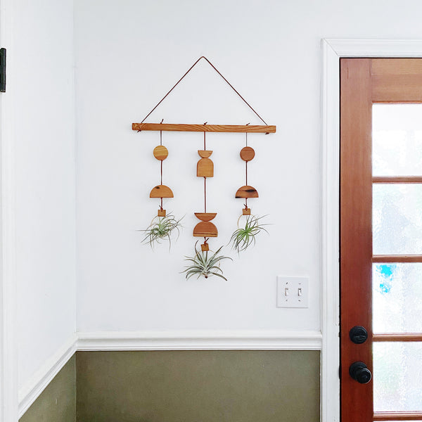 Wildly Air Plant Wall Hanging no.56