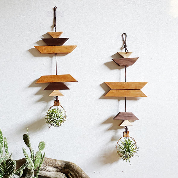 Modern Southwest Air Plant Wall Hanging - no.064