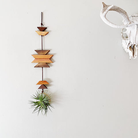 Modern Southwest Air Plant Wall Hanging - no.067