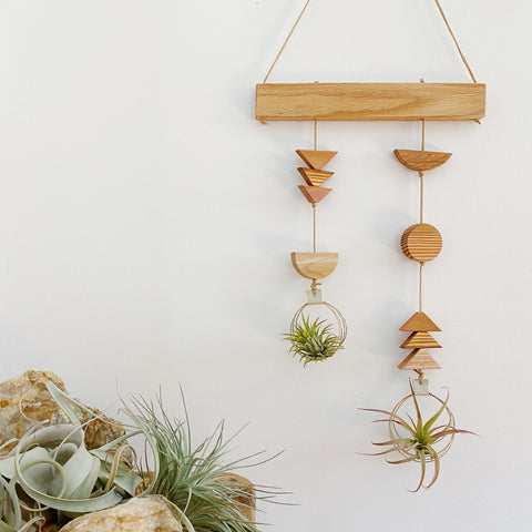 Air Plant Wall Hanging - Asymmetric Double Modern Shapes no.007