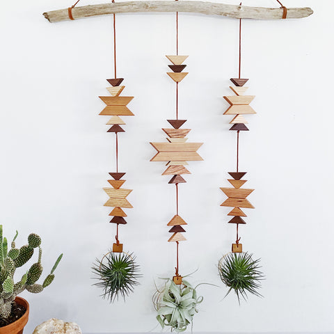 Modern Southwest Air Plant Wall Hanging - Across the Dunes no. 004