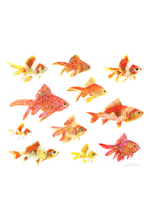 Lulu's Art Decals, Goldfish