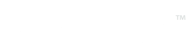 Goomee™ The Markless Hair Loop