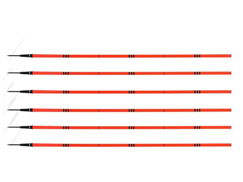AGILITY POLES (SET OF 6)
