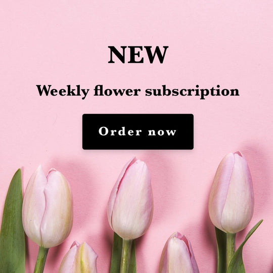 NEW Weekly Flower subscription for home and business