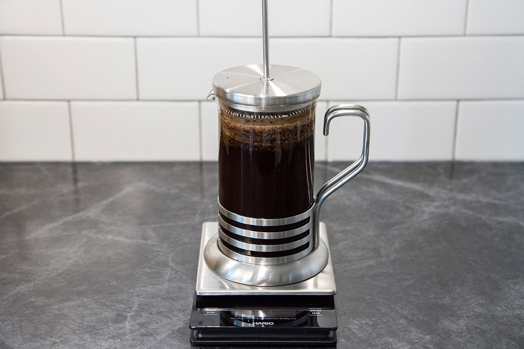 how to make the perfect french press coffee lid