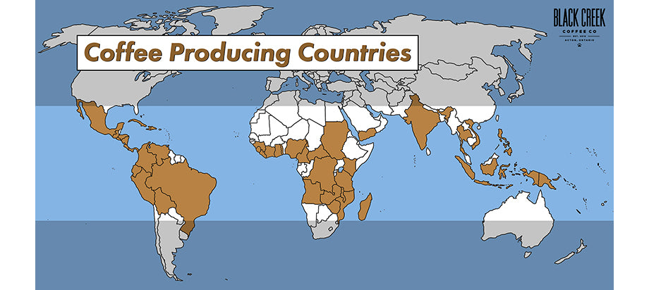 map of coffee producing countries coffee belt