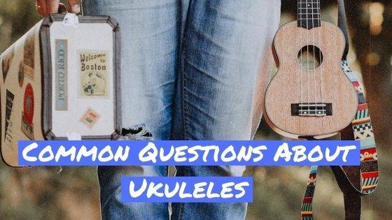 Common Questions About Ukuleles