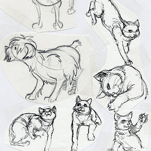 Animal Drawing Part 2