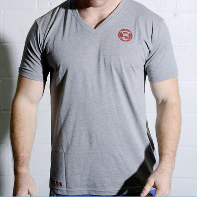 Gray V-Neck Logo T-Shirt *FLASH SALE*