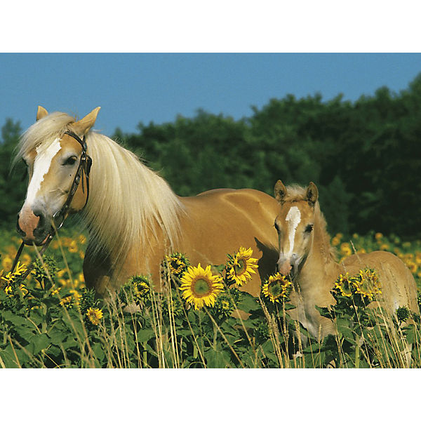 XXL Jigsaw - 200 Pieces - Horse Bliss