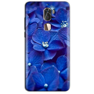 Coolpad Cool 1 Mobile Covers Cases Blue flower - Lowest Price - Paybydaddy.com