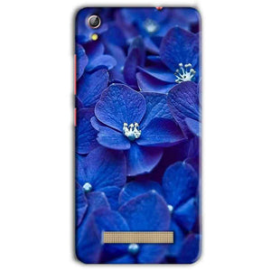 Gionee Pioneer P5L Mobile Covers Cases Blue flower - Lowest Price - Paybydaddy.com