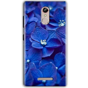 Gionee S6S Mobile Covers Cases Blue flower - Lowest Price - Paybydaddy.com