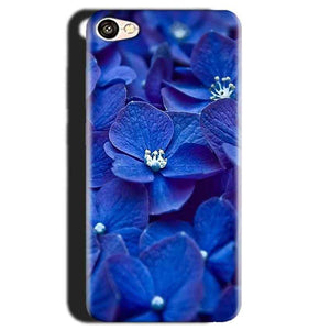 Gionee S6 Mobile Covers Cases Blue flower - Lowest Price - Paybydaddy.com