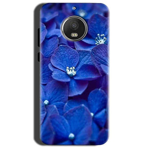 Motorola Moto G5S Mobile Covers Cases Blue flower - Lowest Price - Paybydaddy.com