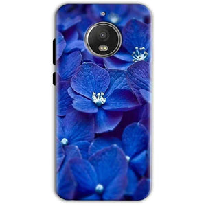 Motorola Moto G5 S Plus Mobile Covers Cases Blue flower - Lowest Price - Paybydaddy.com