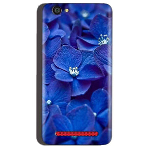 Reliance Lyf Flame 1 Mobile Covers Cases Blue flower - Lowest Price - Paybydaddy.com